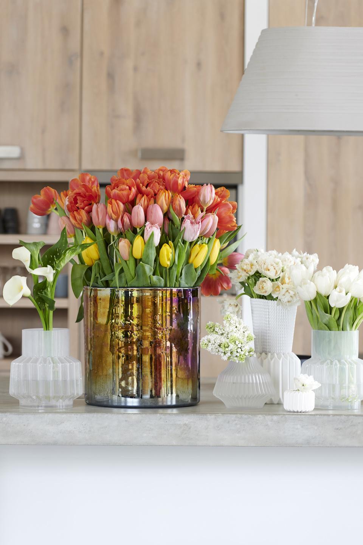 Bloemenagenda januari - Tulp
