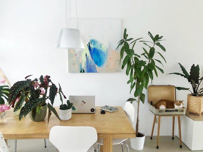 Wat doet Covid-19 met consumenten van bloemen en planten?